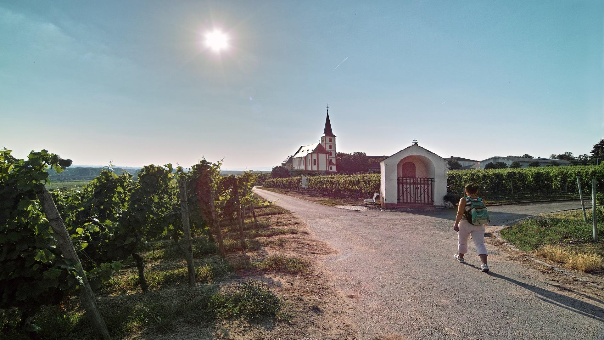 Main-Taunus-Kreis - Kath. Pfarrkirche St. Peter und Paul in Hochheim am Main