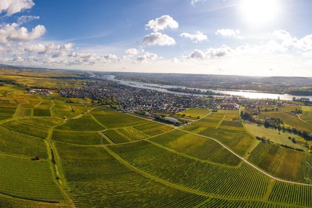 Rheingau - Goetheblick