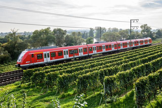 S-Bahn S1 in Fahrt