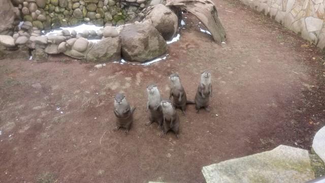 Darmstadt - Zoo Vivarium