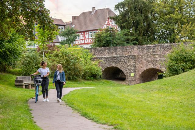 Kreis Offenbach - Dreieichenhain Burgruine Dreieich