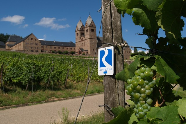 Rheingau - Teil vom Rheinsteig in Rüdesheim am Rhein
