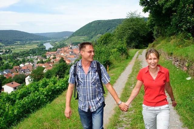 Fränkischer Rotweinwanderweg